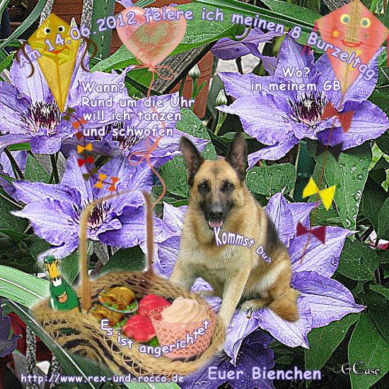 An den Beitrag angehängtes Bild: http://www.rex-und-rocco.de/images/imag2012/Ilwyn_8Geb2012.jpg