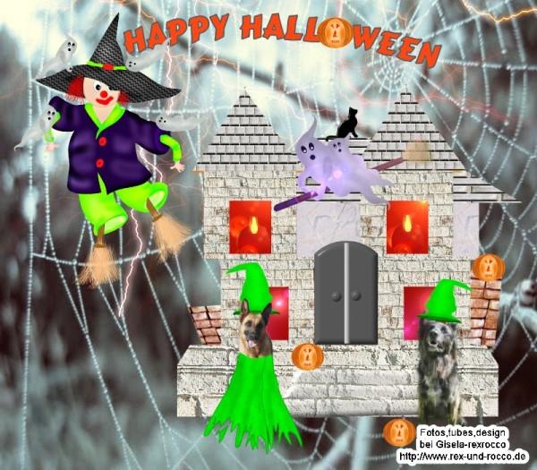 An den Beitrag angehängtes Bild: http://www.rex-und-rocco.de/images/imag2014/Halloween2014.jpg
