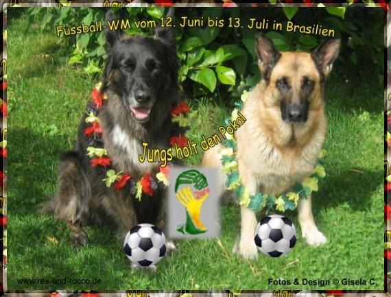 An den Beitrag angehängtes Bild: http://www.rex-und-rocco.de/images/imag2014/WM2014_Bild2.jpg