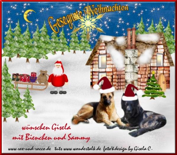 An den Beitrag angehängtes Bild: http://www.rex-und-rocco.de/images/imag2014/Weihnachten2014.jpg