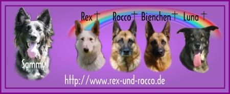 Gästebuch Banner - verlinkt mit http://www.rex-und-rocco.de