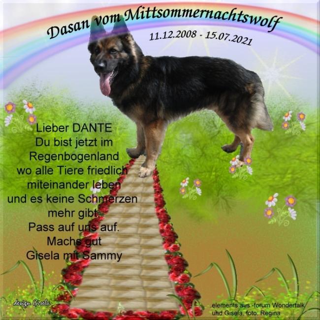 An den Beitrag angehängtes Bild: https://www.rex-und-rocco.de/images/imag2021/Dante_RGB_15-07-2021.jpg